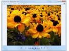 Alternativas superiores a: Visualizador de fotos de Windows