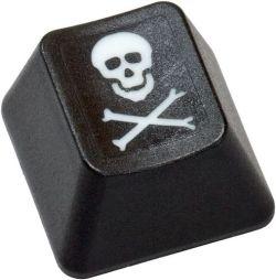 Pirate Pay rastrea y desconecta los torrents