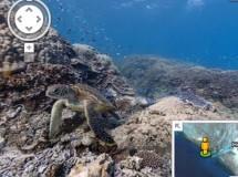 Google Maps se sumerge en el mar