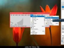 Software libre para Windows