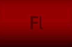 Feds utiliza Flash para identificar a los usuarios de TOR