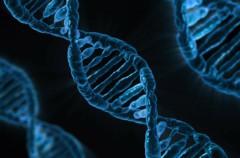 Microsoft consigue almacenar 200 MB de datos en el ADN
