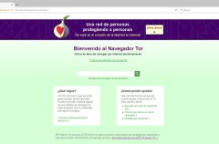 Firefox y Tor Browser reciben una actualización para solucionar un fallo grave