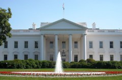 Occupy White House, un ataque DDoS contra la investidura de Donald Trump