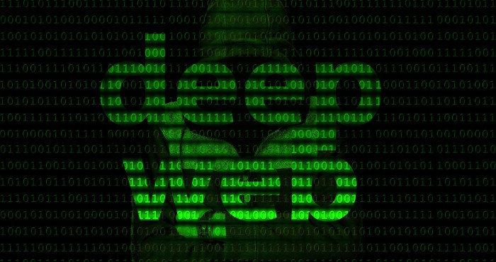 Freedom Hosting II es atacado: cerrado el 20% de la Deep Web