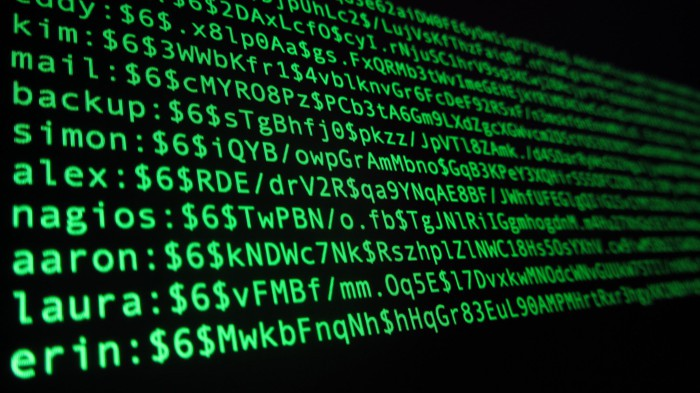 Nuevo robo: filtradas 560 millones de contraseñas