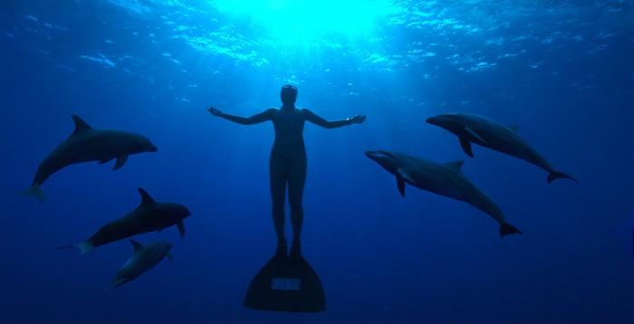 Discovery MAX celebra mañana el Día de la Tierra con The Cove y Racing Extinction