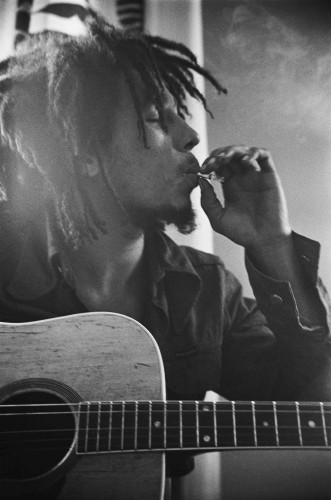 DMAX estrena mañana Marley