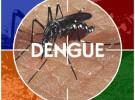 Nacen dos bebés con dengue en Argentina