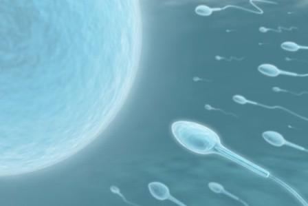 infertilidad o esterilidad