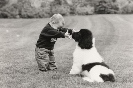 bebe + perro