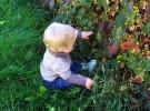 Protege a los niños de las picaduras de los insectos