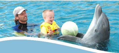 Los beneficios de la delfinoterapia