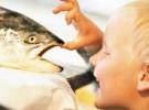 Trucos sencillos para que le guste el pescado