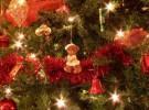Bebé seguro durante la Navidad