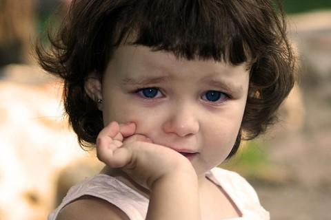 los bebes reconocen las intenciones de los adultos y actuan en consecuencia