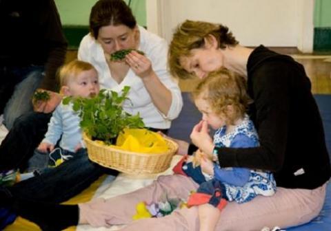 Baby sensory en España II