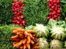 Verduras ricas en calcio