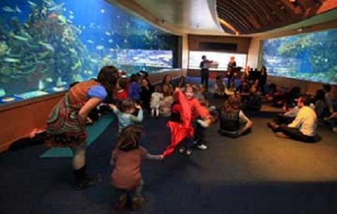 Música para bebés en el Oceanogràfic de Valencia