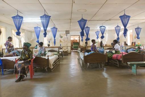 Vacuna contra la malaria, cada vez más cerca