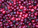 Receta para niños: Flan de cerezas