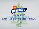 Brekkies nos anima a aumentar la familia en Navidad