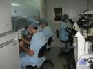 Rusia cuenta con tratamientos FIV gratuitos
