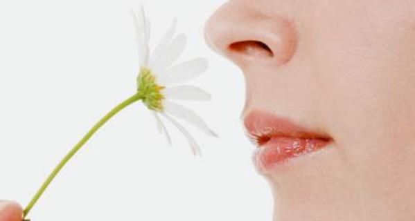 Sensibilidad olfativa durante el embarazo