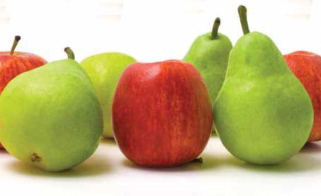 Recetas de fruta para bebés: Papilla de manzana y pera hervidas