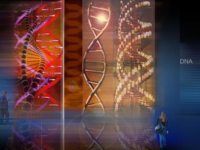 Novedades en relación al ADN