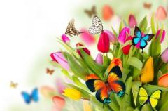 Canción: Primavera