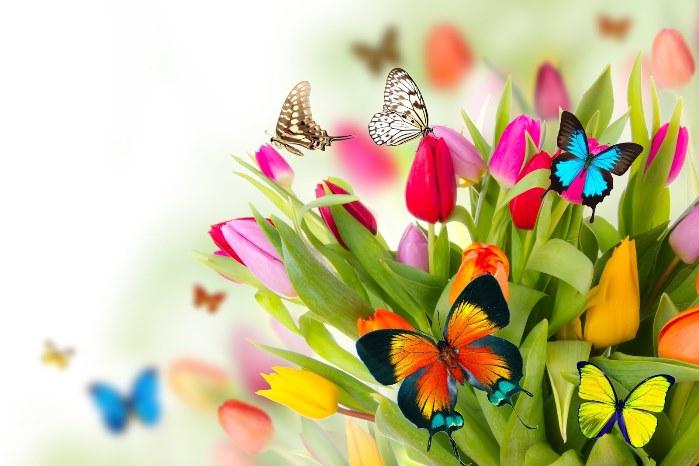 primavera de cantajuego