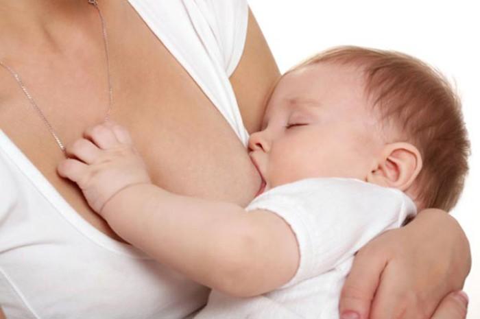 lactancia y regulacion del apetito