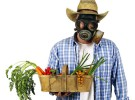 Los pesticidas de frutas y verduras afectan a la calidad del semen