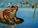 Poema: Encanto de luna y agua