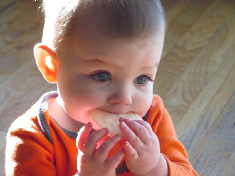 Las galletas deberían ser ocasionales en la dieta del bebé