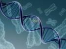 Uno de cada cien niños nace con una enfermedad genética rara