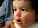 Las papillas de verdura, el primer paso con la comida salada