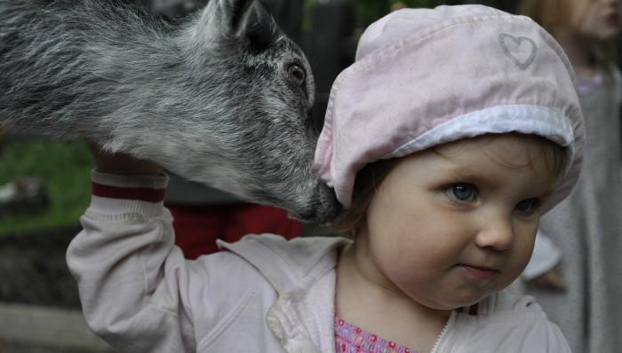Soy Padre: Sí, los animales son buenos para los niños
