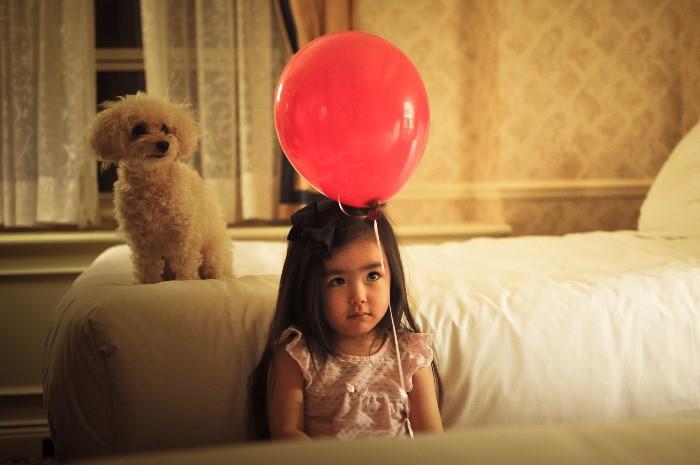 Asma infantil y perros