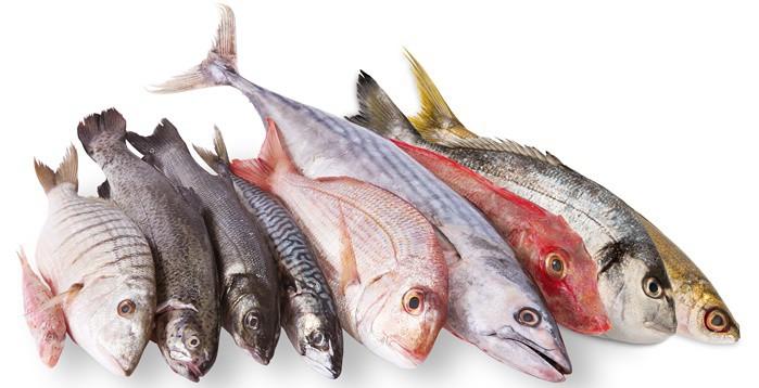 Pescado y omega 3