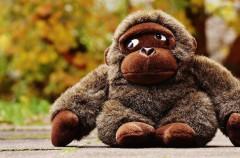 Horóscopo maya: Gorila