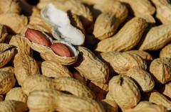 Novedades acerca de la alergia al cacahuete