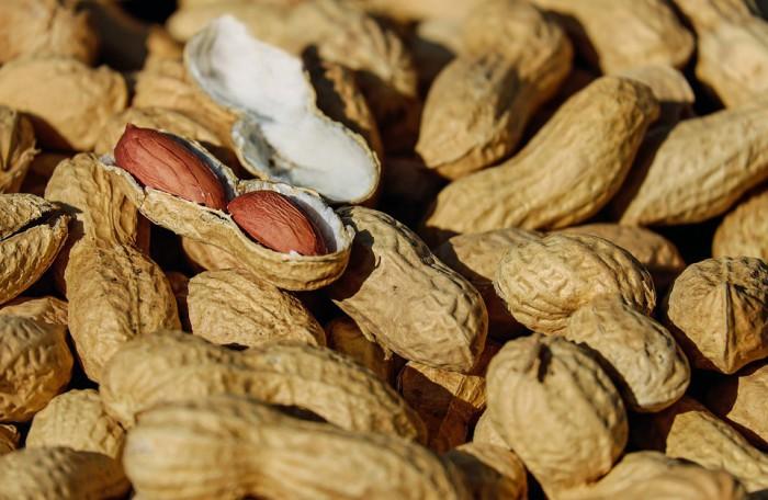 Unanueva investigación sobre las alergias