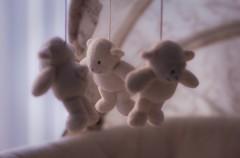 Elegir su ropa de cama: seguridad y confort (Parte II)