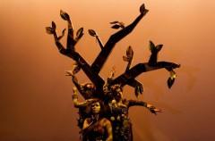 Yosoybebé, festival de teatro, danza y poesía en Granada