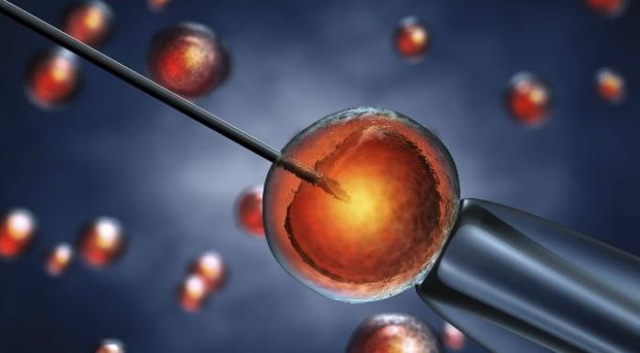 donacion de ovulos