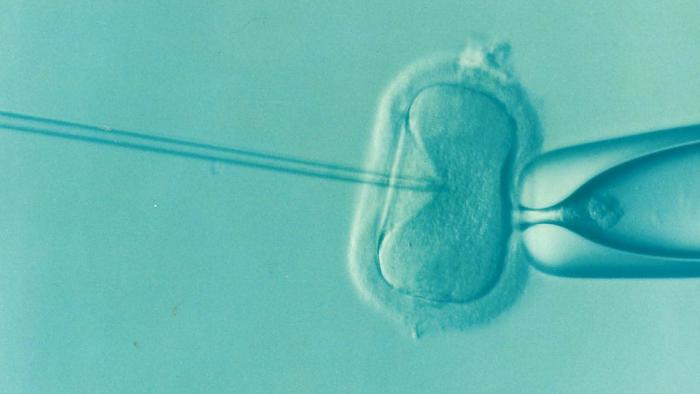 Un problema que se relaciona a la infertilidad masculina