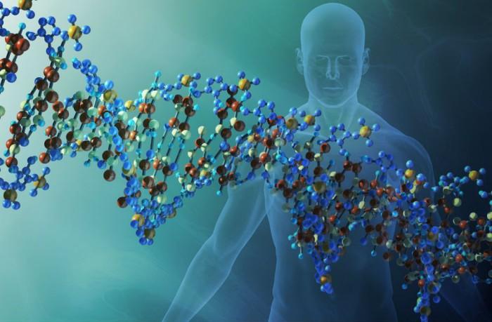 gen causante infertilidad
