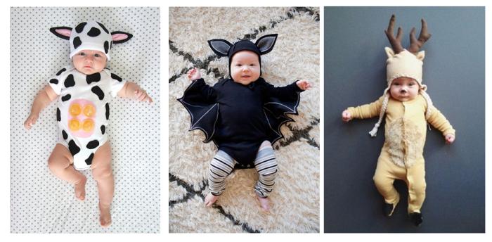 Halloween disfraces animales (1)
